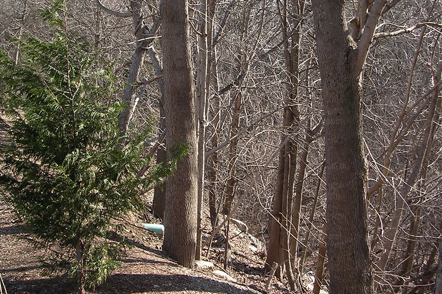 Pawtuxet River Trail: Scituate, Rhode Island