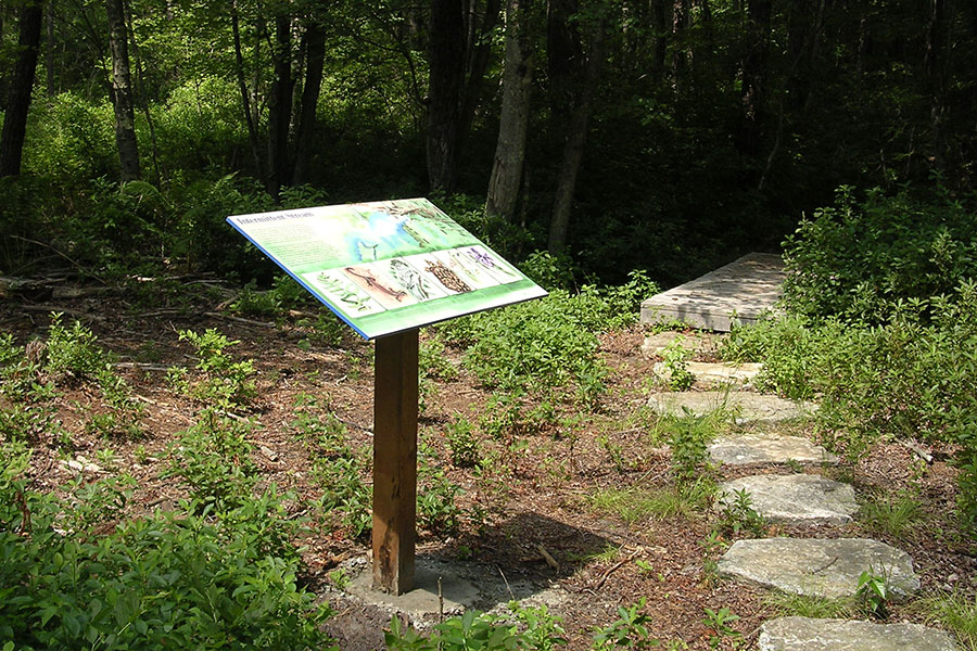 Browning Woods Trail