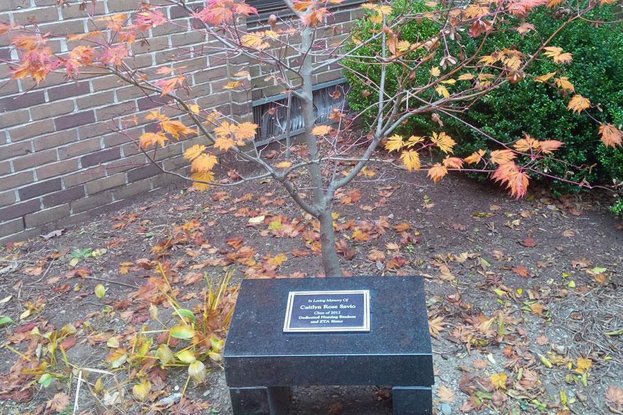 Florence Nightingale Memorial Garden
